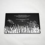 """Vista superior de """"El libro negro de los colores"""". [Descripción de imagen] En contraportada, la ilustración de saltamontes, saltando sobre la hierba, y el texto indicado en la descripción del producto."""
