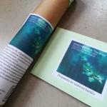 Detalle de un pergamino compuesto de un rollo de papel y pintura para una «Propuesta de experimentación de la obra The River.